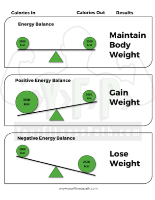 Energy-Balance-The-Basics