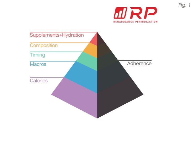 RP dietpymramid